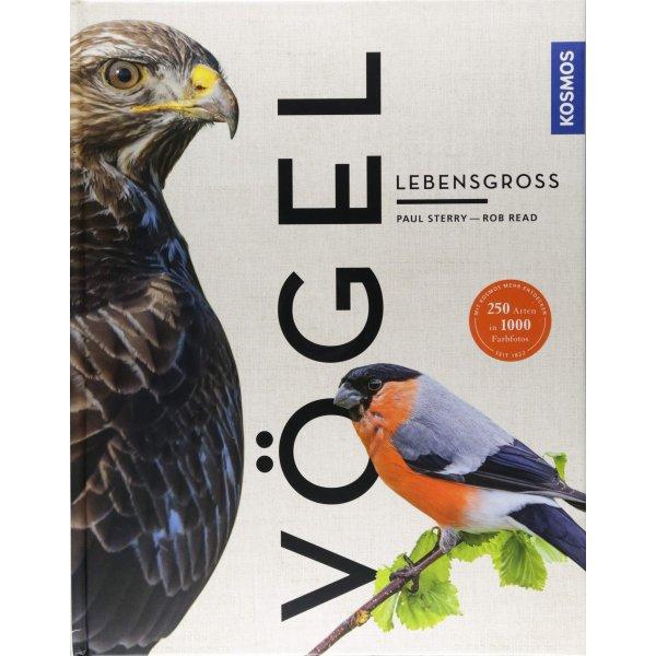 Paul Sterry, Rob Read - Vögel lebensgroß (Großformat)